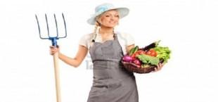 Безработным женщинам в Таджикистане предлагают стать фермерами