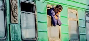 migration train