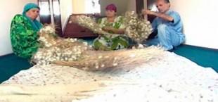 В Таджикистане возрождают производство и переработки нитей тутового шелкопряда