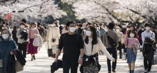 Japan coronavirus 028