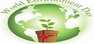 В Душанбе отметят Всемирный день окружающей среды