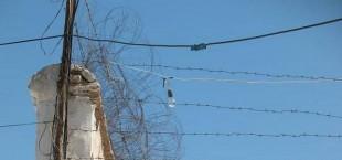 В Таджикистане раскрыта наркогруппировка, которой руководили осужденные