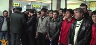migranty 002