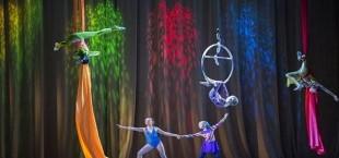 На развитие циркового искусства в Таджикистане выделено 14 млн. сомони